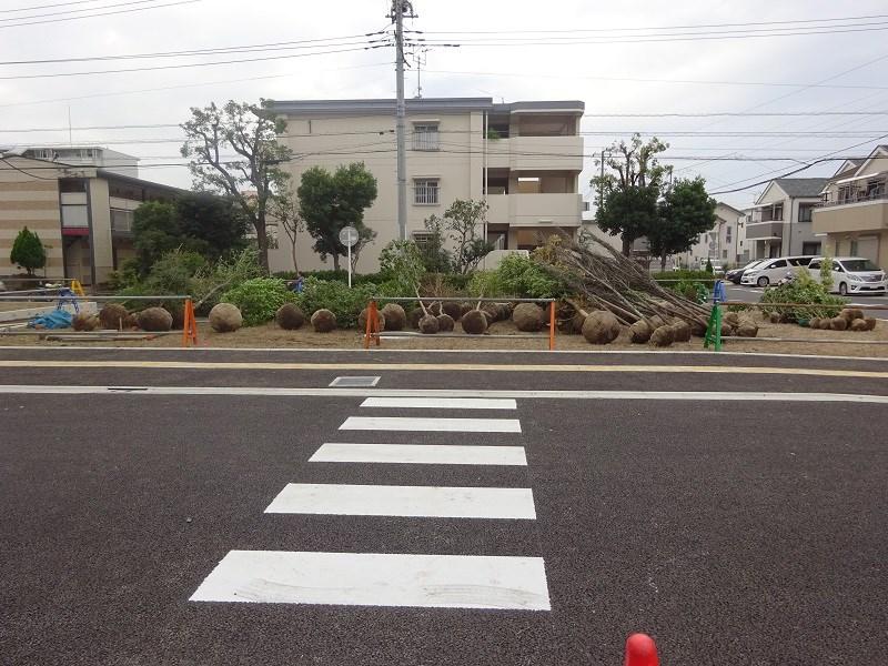 都営住宅の植栽工事スタート