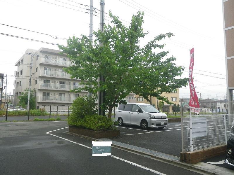 中央大学 東豊田寮の樹木の手入 施行の様子を写真でご紹介