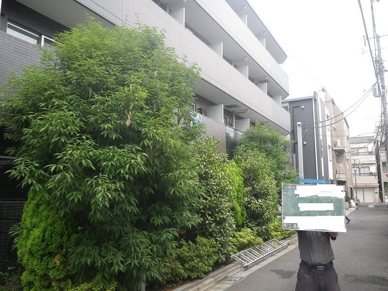 マンション緑地管理編と寺院のお手入