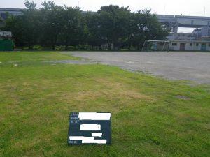 葛飾区の小学校校庭芝生化工事 養生期間終了