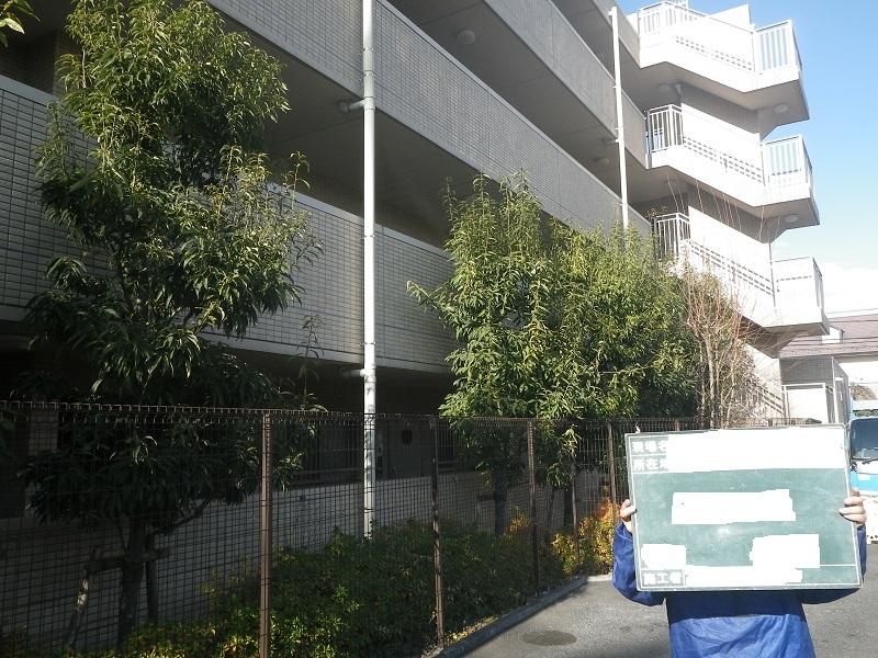 マンション緑地管理…樹木剪定、生垣の刈込、除草作業 編