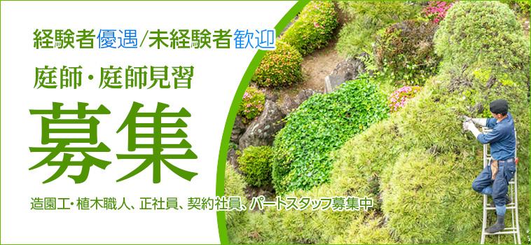 東京勤務 庭師(造園工・植木職人)採用情報