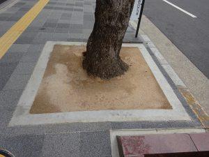 雑草対策 後編 『個人宅&街路樹などの場合』