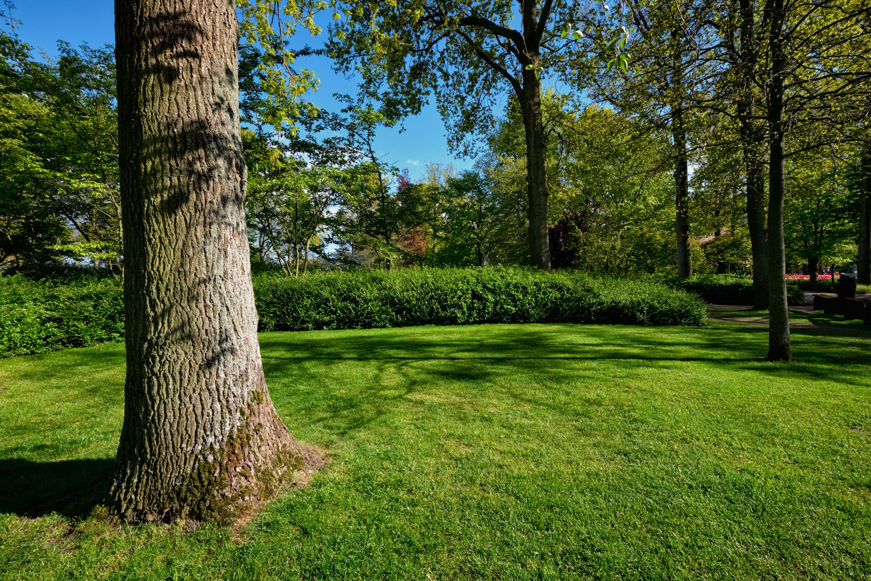 第二回 樹木をきれいで健康に保つために、必要なお手入れ『病害虫の予防・駆除』編