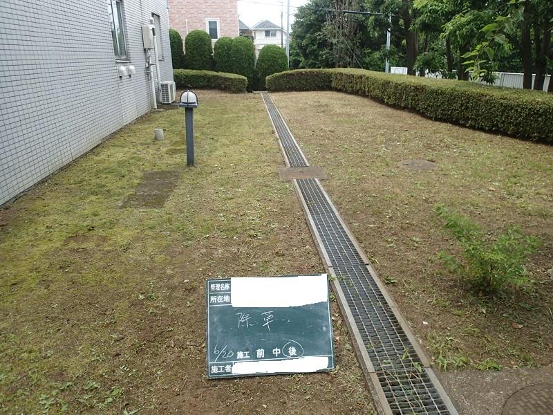 刈込と除草のセットメニュー