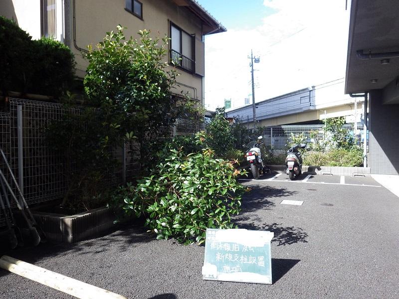 台風による倒木処理その1