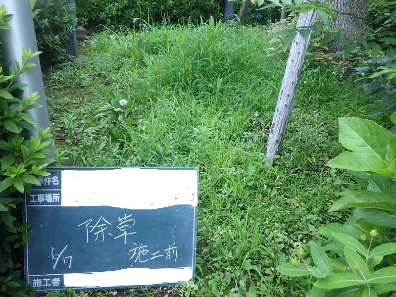 公共施設での年間管理事例にみる、雑草の伸びる速さ(年間メンテナンス回数の目安)